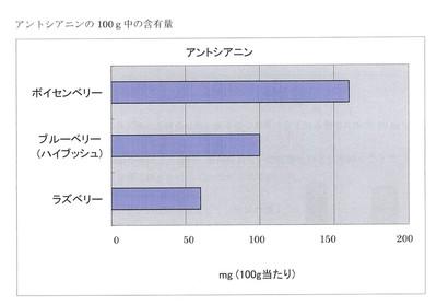 アントシアニン成分表.jpg