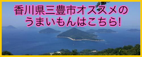 香川県三豊市誘導バナー.jpg