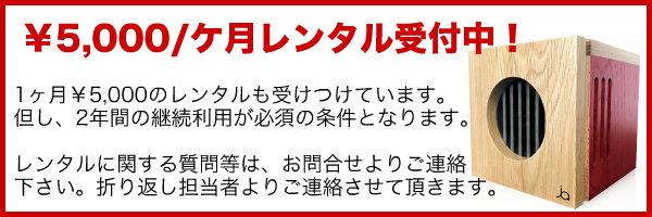 5000円レンタル募集.jpg